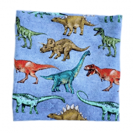 Sall dinosaurustega