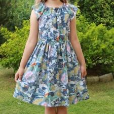 Sinisekirju kleit