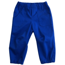 Royal Blue Trousers